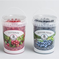 berries - bucket