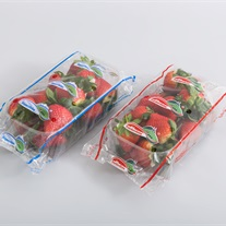 berries - plastc tray with flowpack film