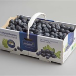 Berries packaging