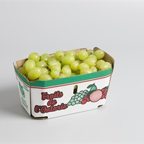 grapes - cardboard tray
